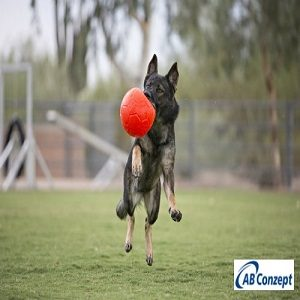 Jolly Pets Soccer Ball - Orange 02